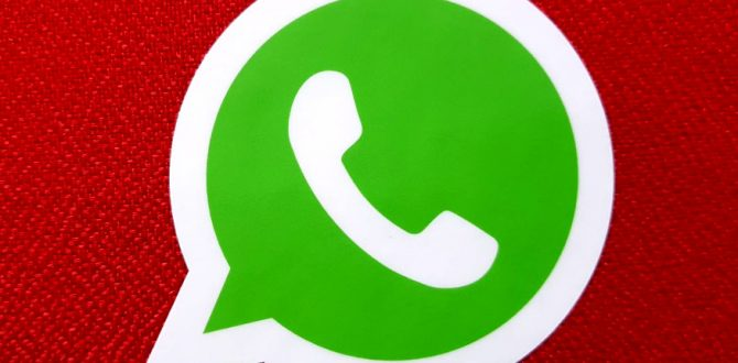 WhatsApp encryption 670x330 - WhatsApp Business For SMBs Now Available on Google Play Store
