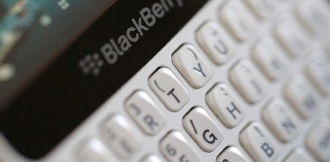 blackberry 670x330 - BlackBerry Launches Cybersecurity Software For Self-Driving Cars