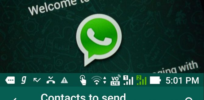 WhatsApp Update 670x330 - WhatsApp Working on GDPR Data Privacy Option For Users: Report