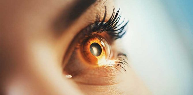 eyes AFP 1 670x330 - Google AI Can Predict Heart Disease by Looking at Pictures of The Retina