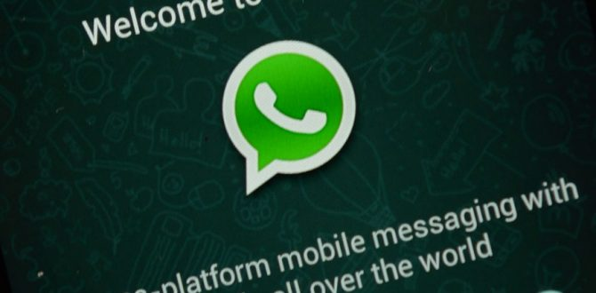 whatsapp AFPrelax 670x330 - WhatsApp Payment Public Launch Only After Meeting All Norms: NPCI