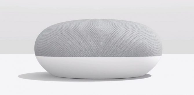 Google Home Mini 1 670x330 - Google Home, Home Mini Launched in India Starting at Rs 4,999; Now Available on Flipkart