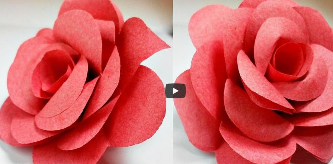 flower 670x330 - Origami flower rose how to do it