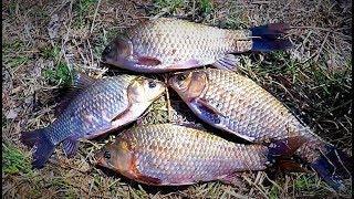 20d1e009a 1 - Рекомендуем сайт видео советы рыбалка и охота